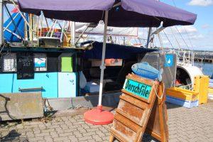 Fischereihafen Möltenort