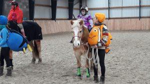 Mein Pferd ist mein Therapeut
