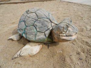 Passt der Schildkröte das Zaumzeug aus dem Lernkoffer?