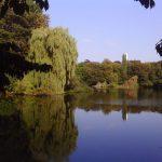 Ein letzter Rundgang durch den Schrevenpark vor dem Herbst