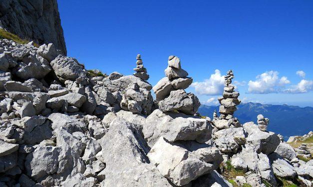 Der Steine-Sammel-Tag!